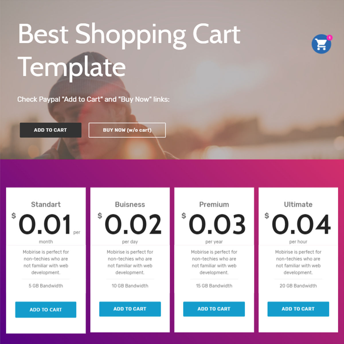 HTML Bootstrap  Shopping Cart  Templates