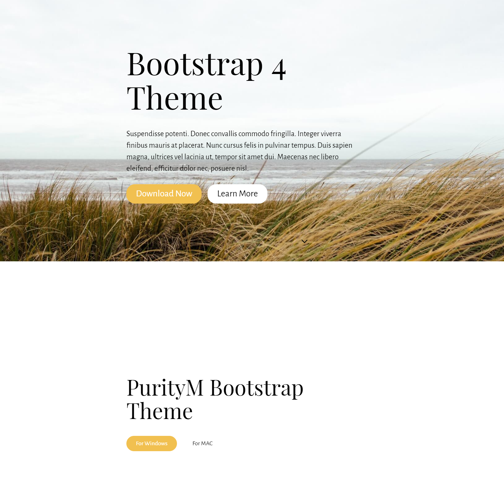 Free Download Bootstrap 4 Templates