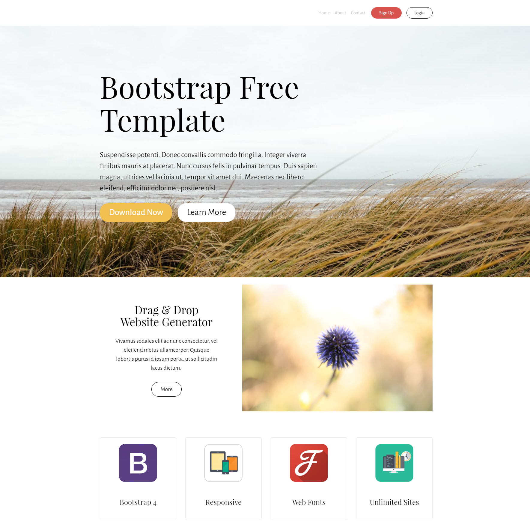 CSS3 Bootstrap Free Templates