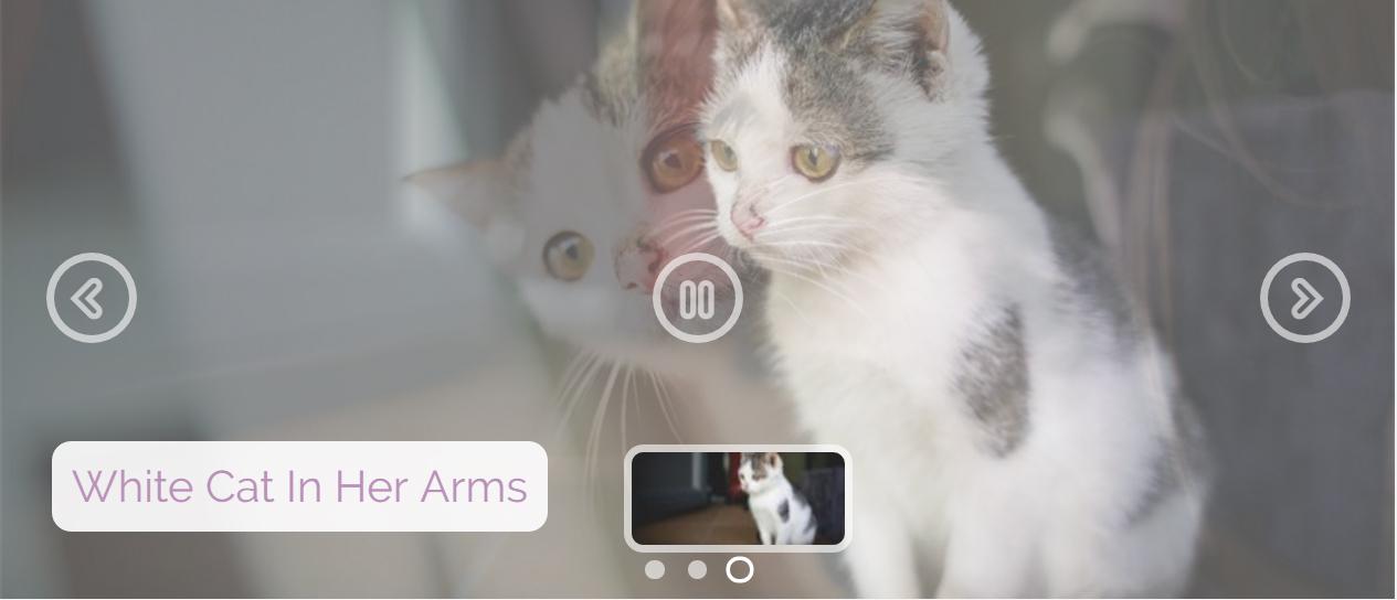 CSS Image Slider