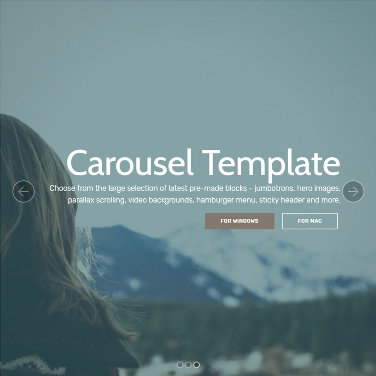 Mobile Bootstrap  carousel  Themes