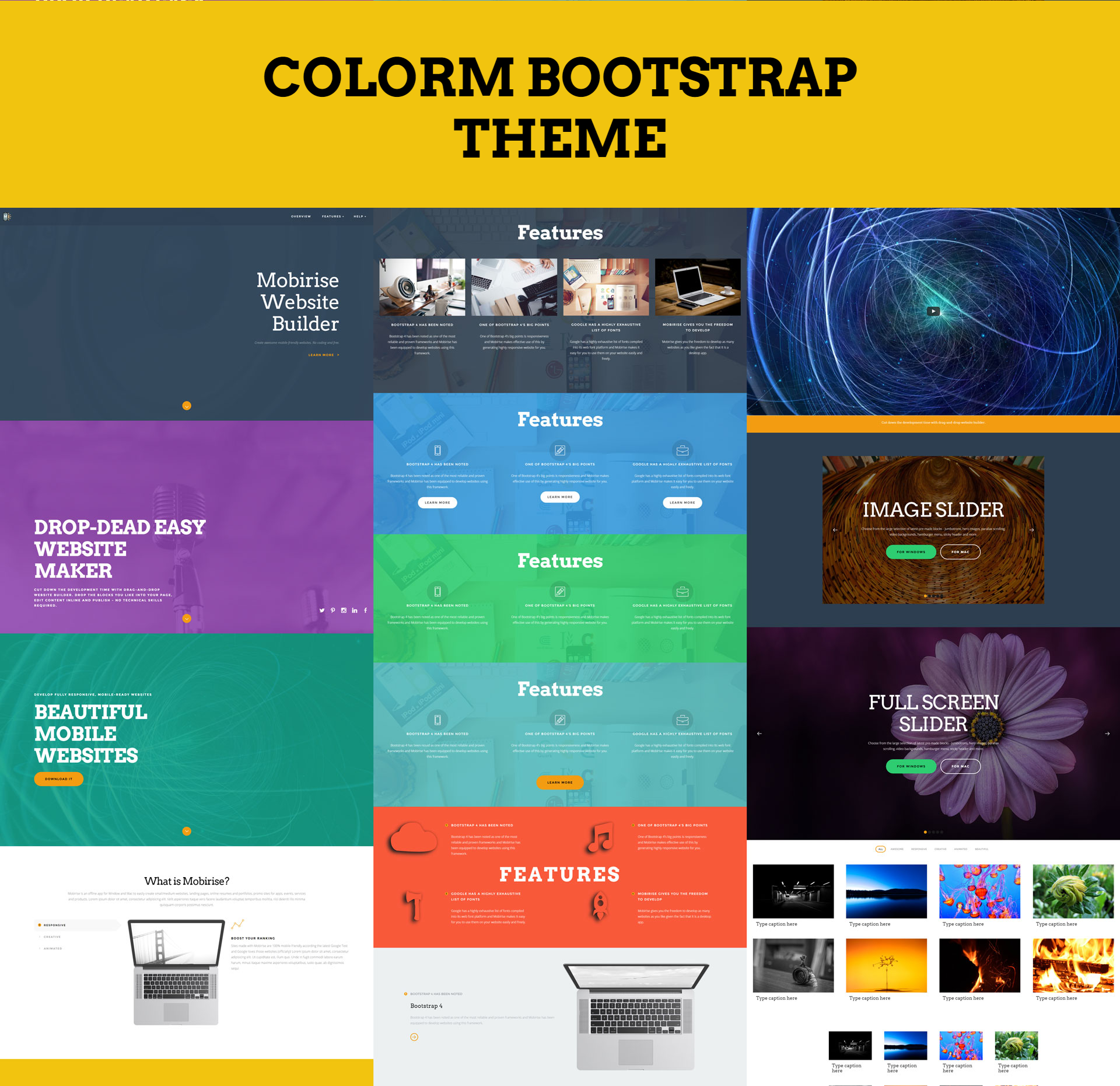 HTML5 Bootstrap ColorM Themes