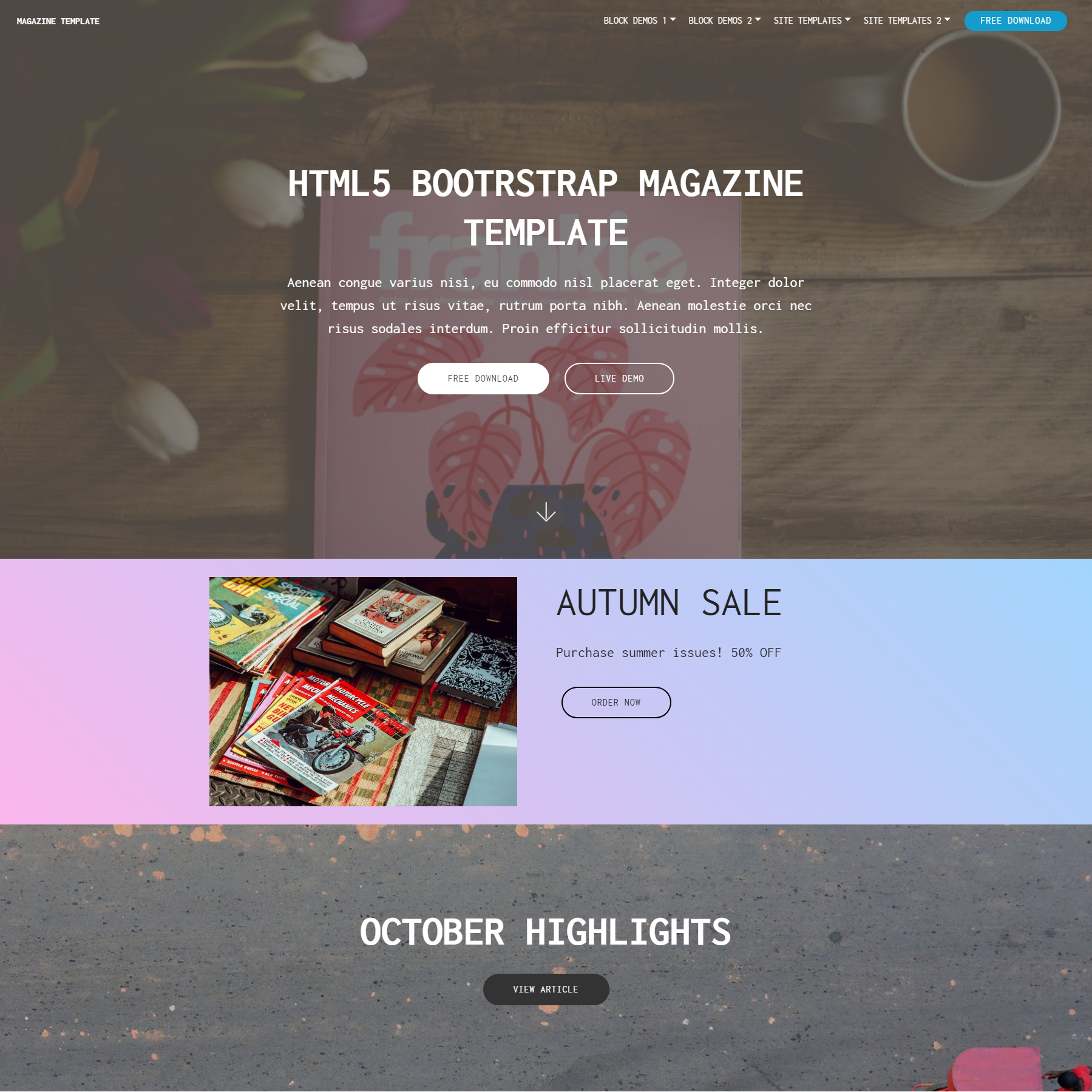 HTML Bootstrap Magazine Themes