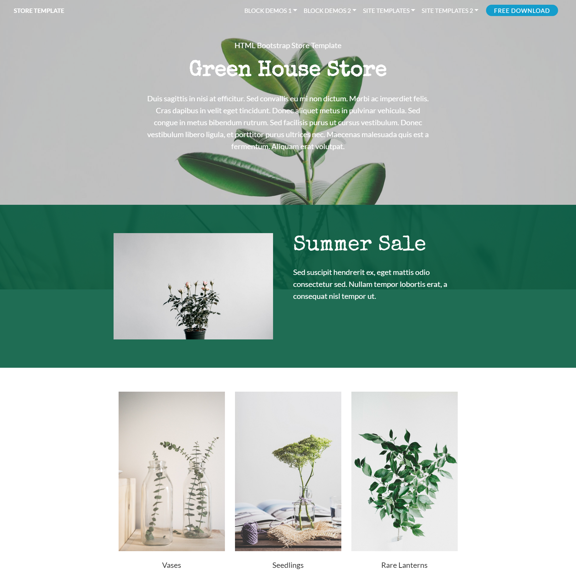 HTML5 Bootstrap Store Templates