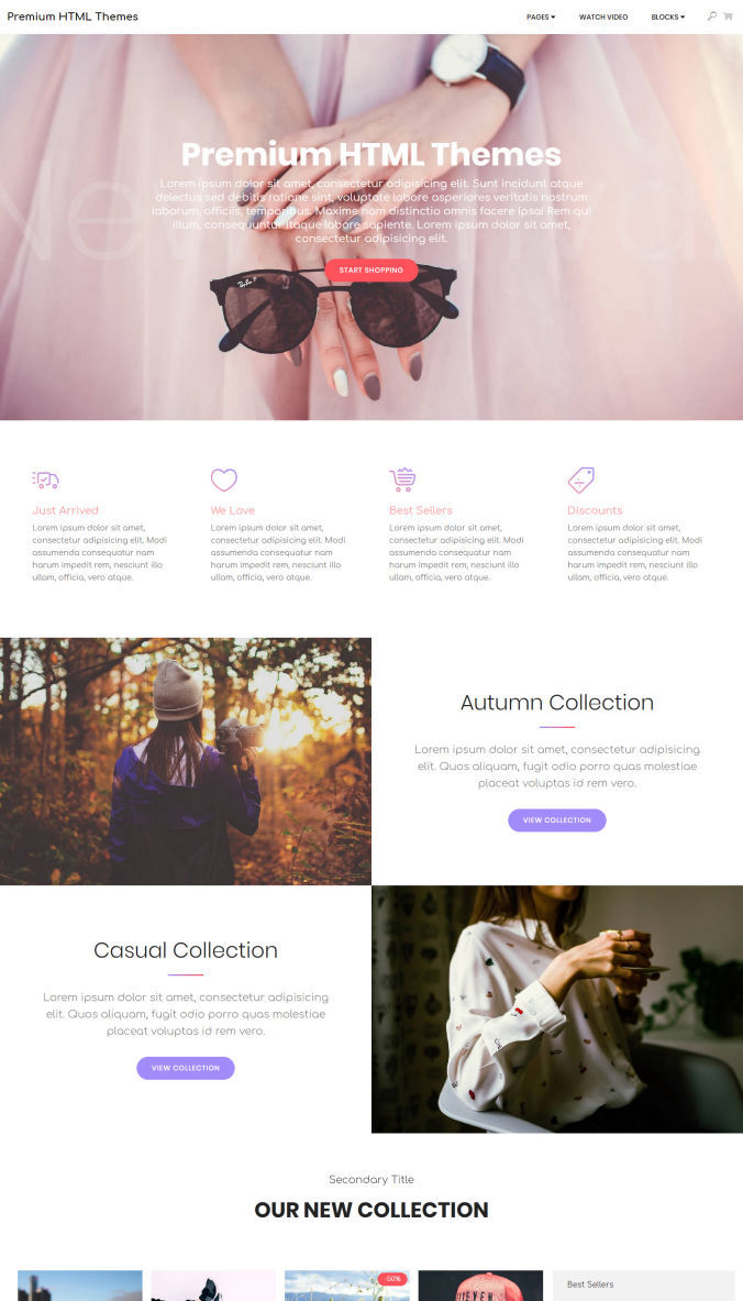 Professional Template for Website